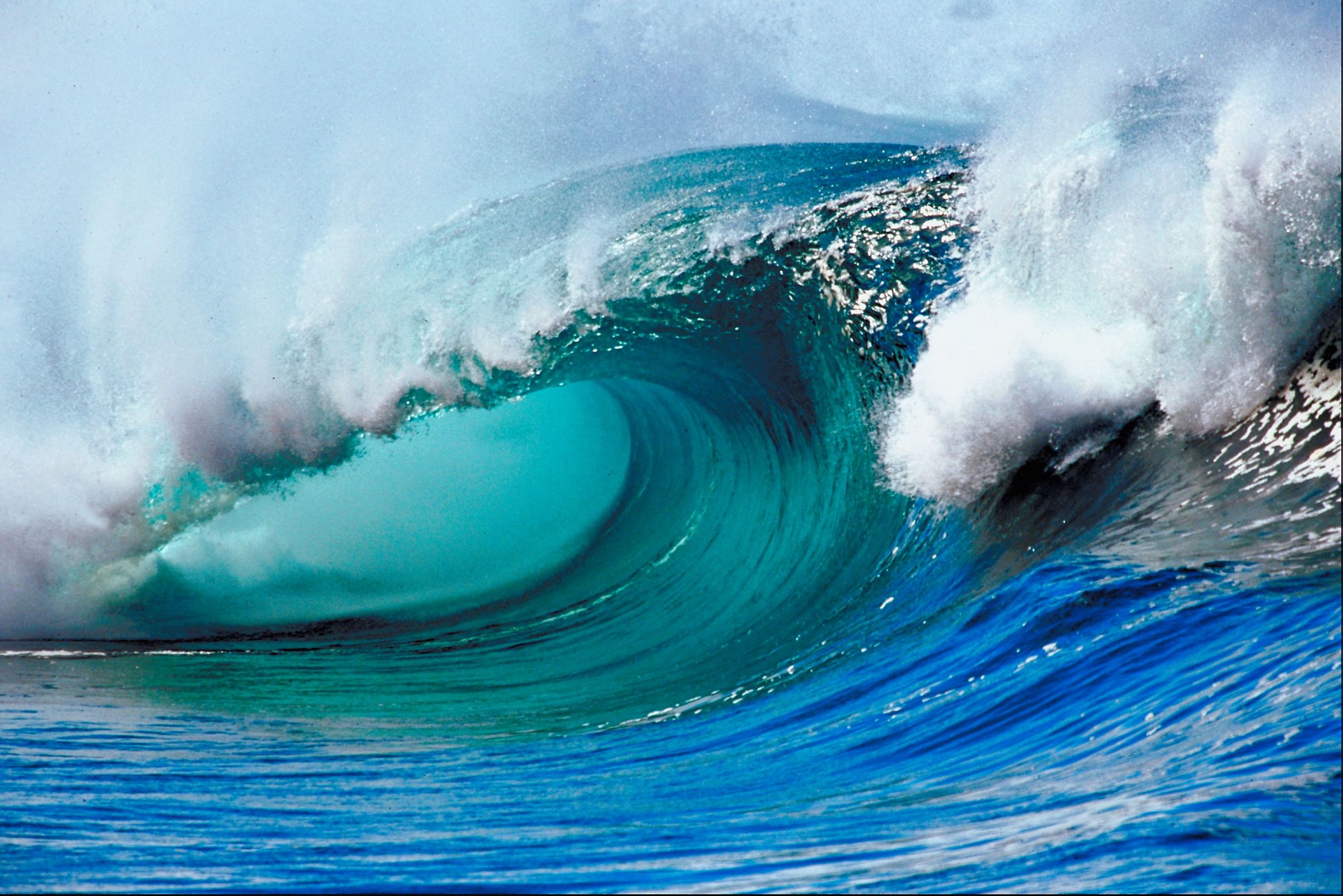The Internet: the Tidal Wave of the Future   IMTCBlog
